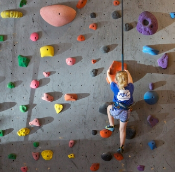 autobelay-climber